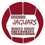 Car Sign Volleyball 10 inch Magnets